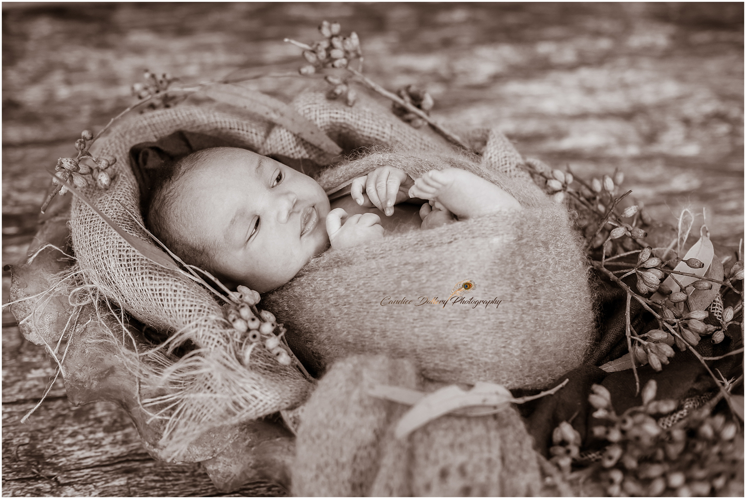 baby Buntu jnr. - Candice Dollery Photography_2561